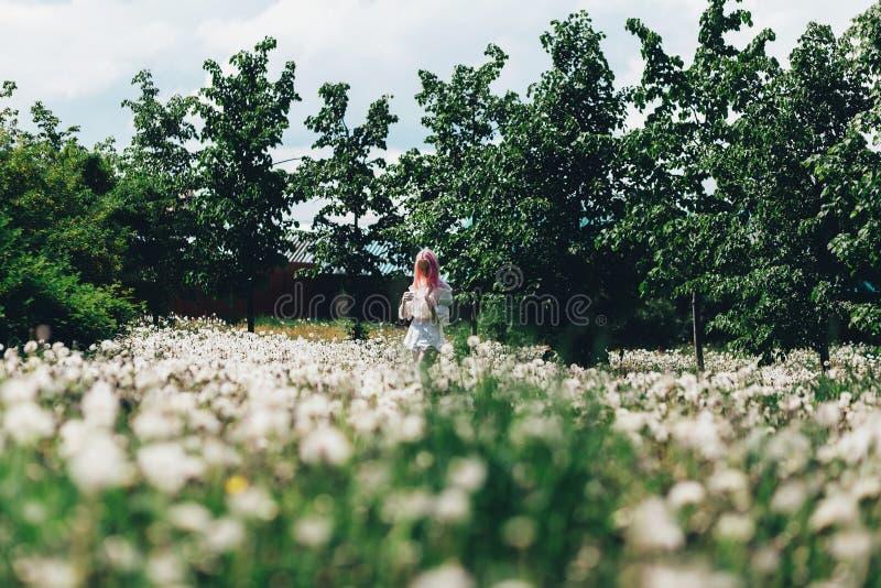 Une fille court à travers un champ des pissenlits en été images libres de droits