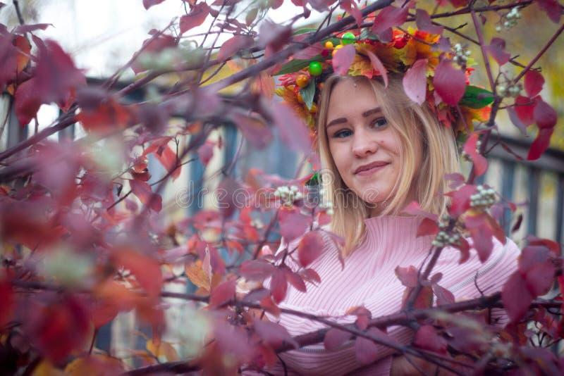 Une fille dans une guirlande d'automne image stock