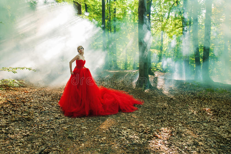 Une fille dans une longue robe rouge et une couronne royale photos stock