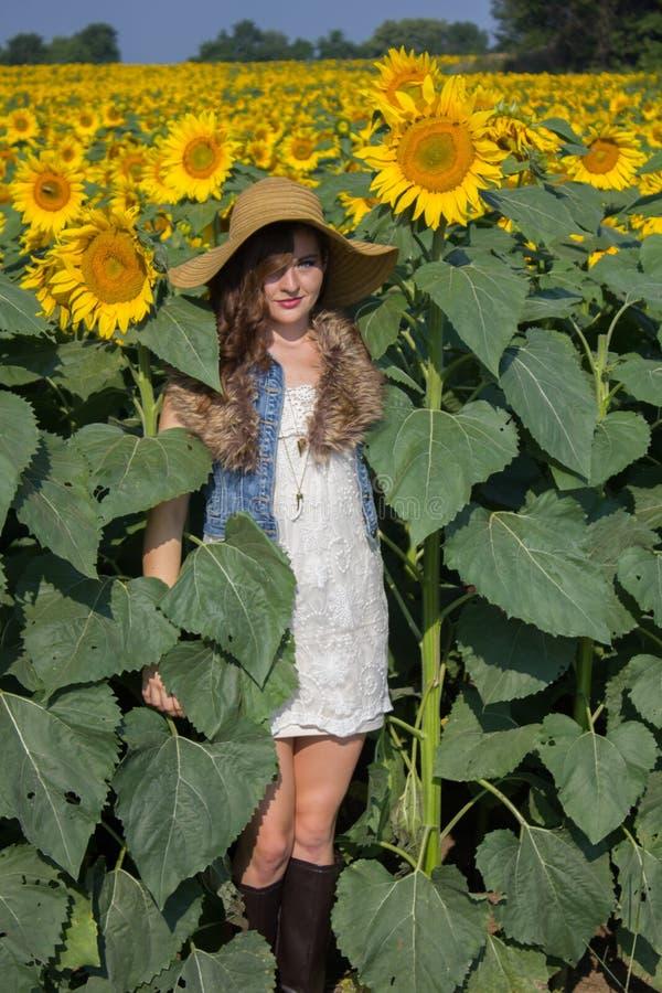 Une fille de sourire se cachant dans un domaine de grands tournesols photos stock