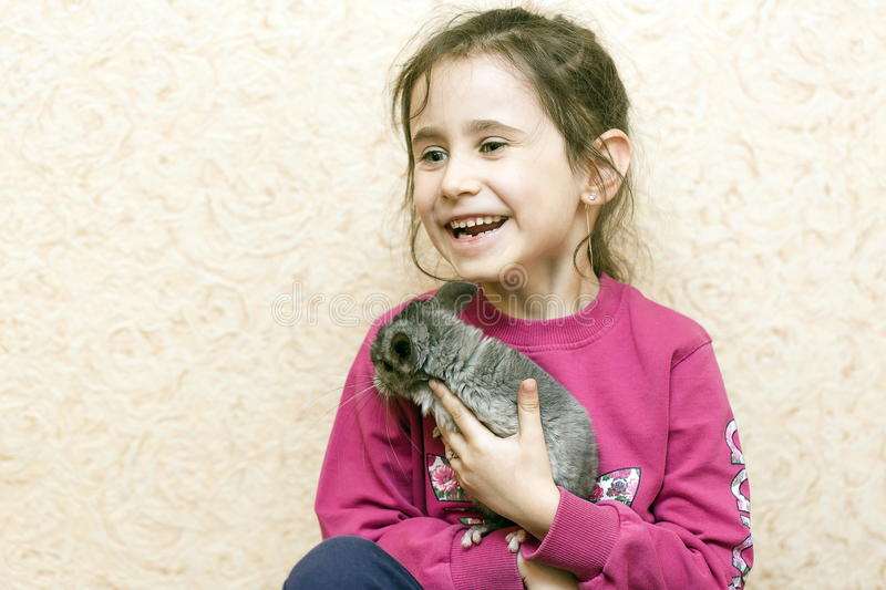 Une fille et un chinchilla photos stock