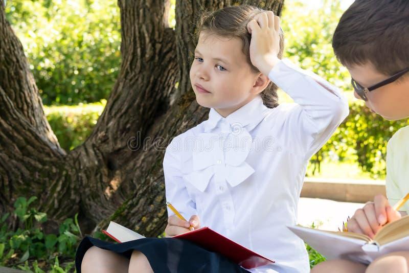 Une fille et un garçon pensent à résoudre un problème dans une leçon étant tenue en nature photographie stock