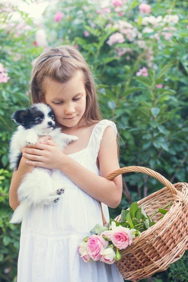Une fille rassemble des roses avec un chiot photographie stock libre de droits