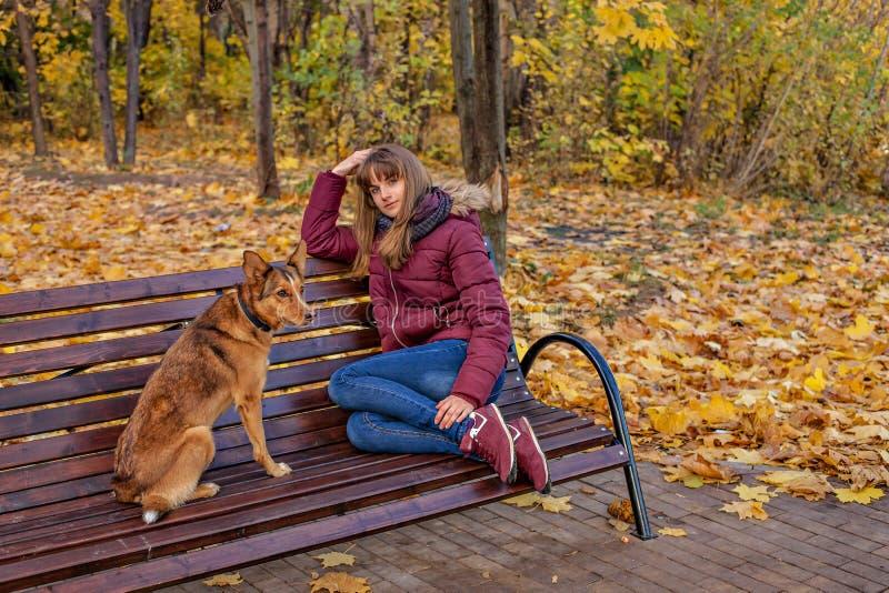 Une fille rousse joyeuse s'assied sur un banc et des rêves ainsi qu'un chien rouge photographie stock