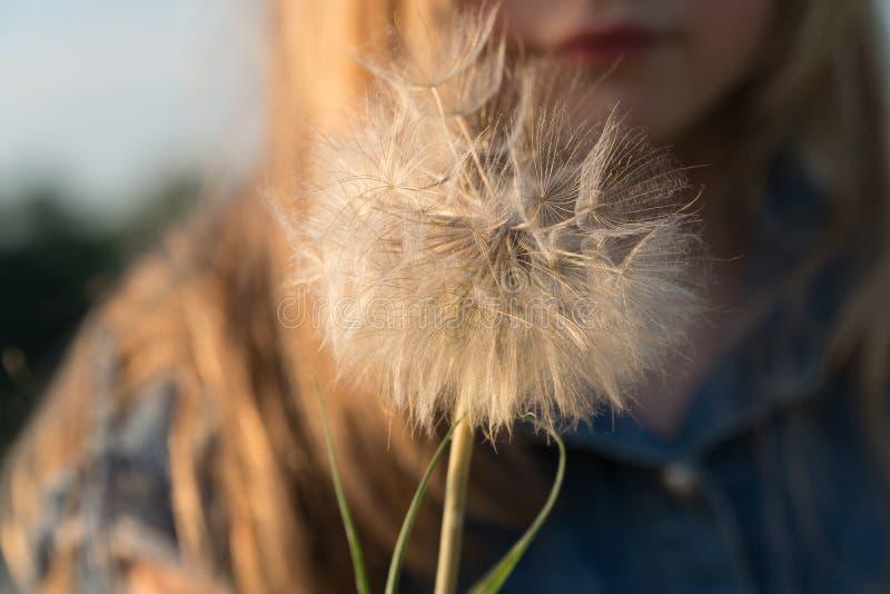 Une fleur dans les mains d'un enfant image libre de droits