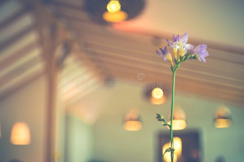 Une fleur de table dans un café photos stock