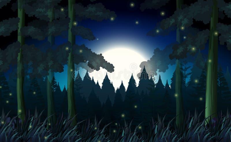 Une forêt dans la nuit foncée illustration stock