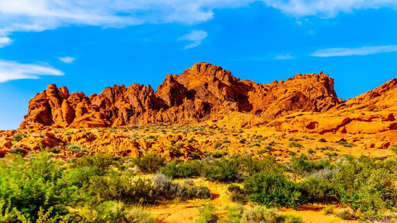 Une formation de roche de grès rouge dans la vallée du parc d'état du feu au Nevada, Etats-Unis images stock