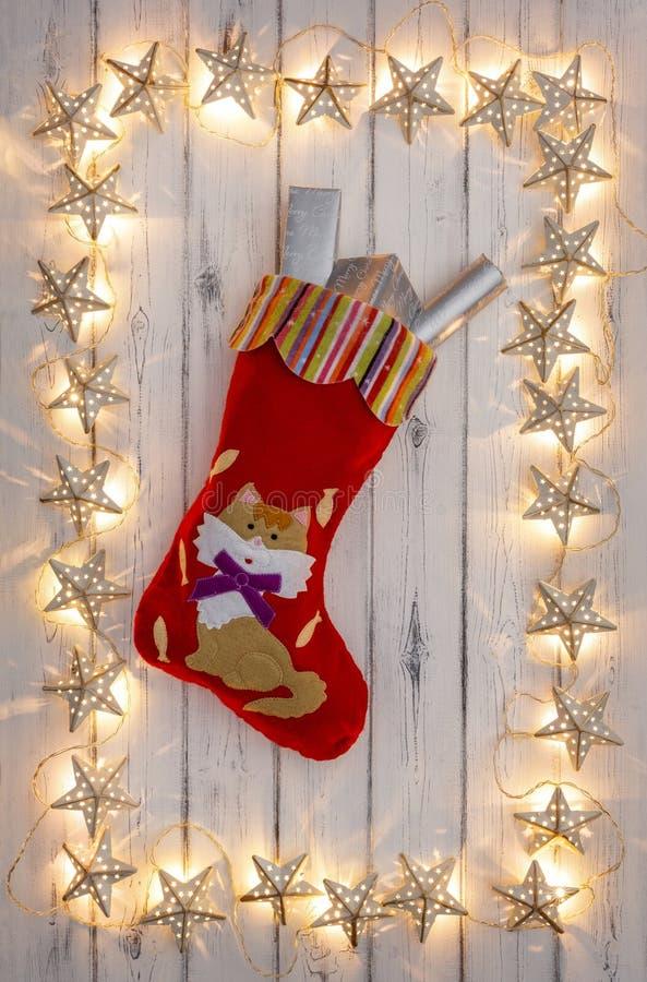 Une frontière des lumières de Noël d'or d'étoile, avec un christm de chatons photo stock