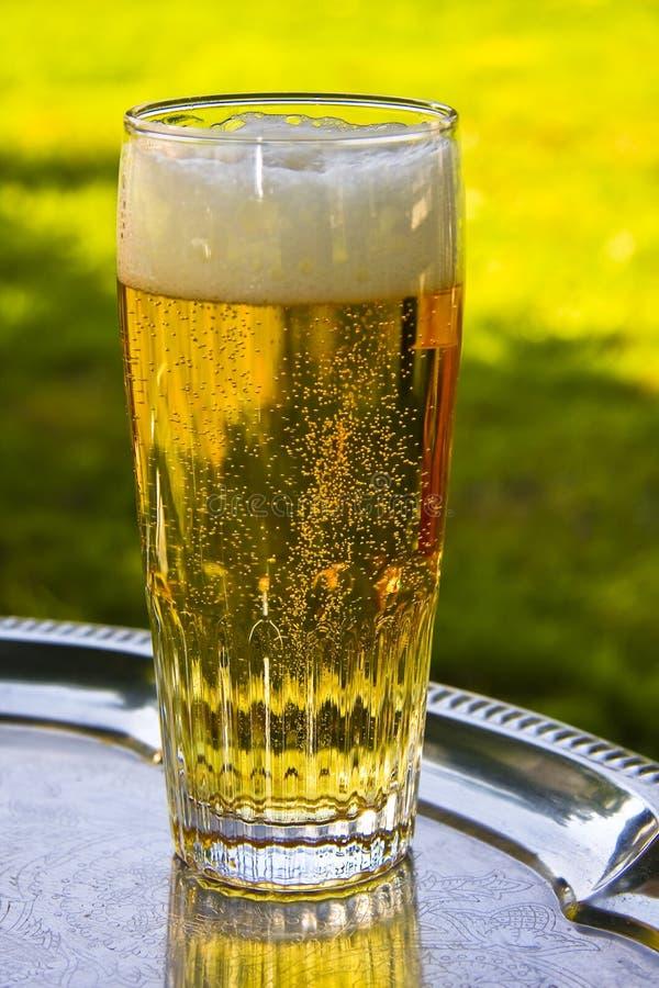 Une glace d'argent de bière sur un plateau photo libre de droits