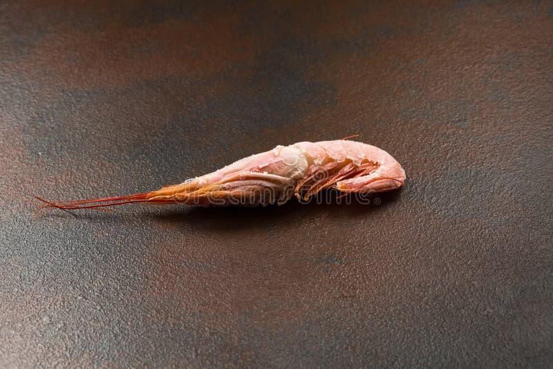 Une grande crevette congelée sur un fond foncé photos libres de droits