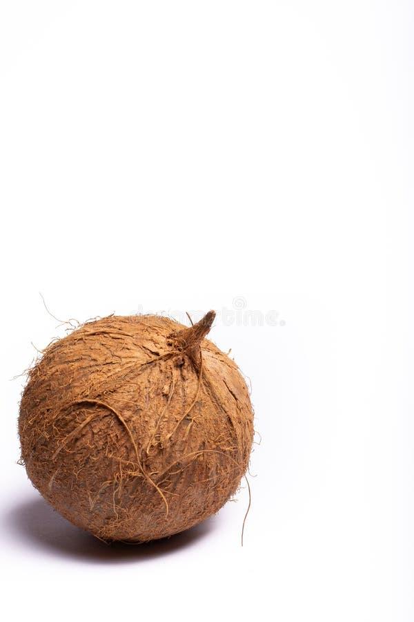 Une grande fin entière brune de noix de coco vers le haut de l'espace de copie sur le petit morceau images stock