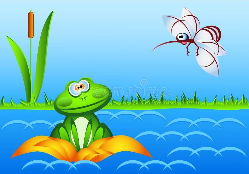 Une grenouille étonnée se repose dans un nénuphar et regarde un moustique énorme photo libre de droits