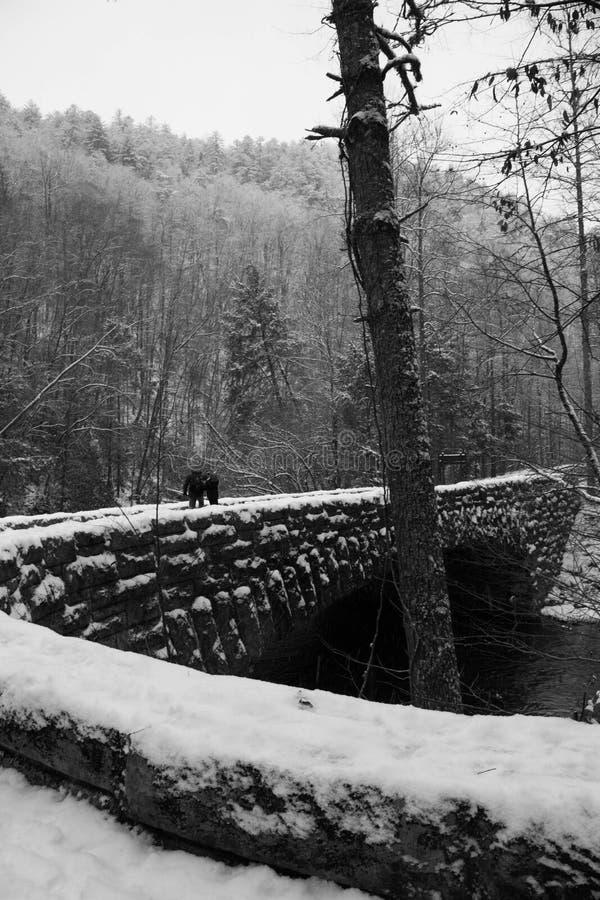Une hausse de Milou le long d'un grand pont de parc de montagne fumeuse photo libre de droits