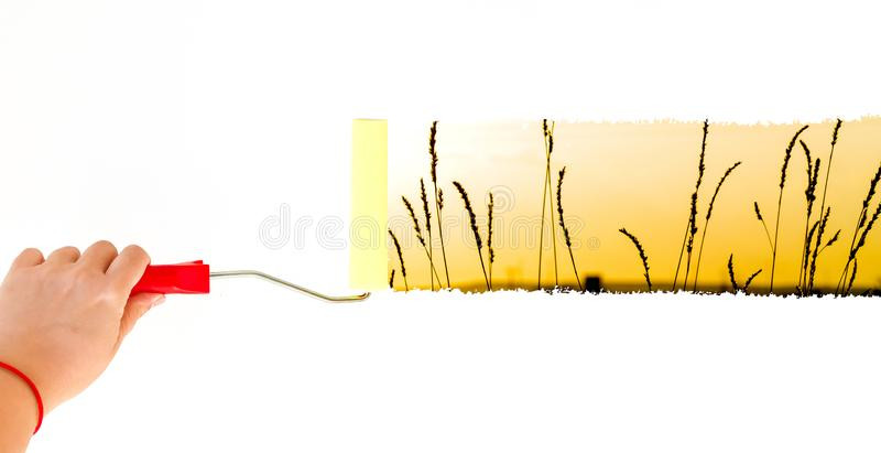 Une herbe de peinture de personne sur un mur blanc avec une brosse de rouleau image libre de droits
