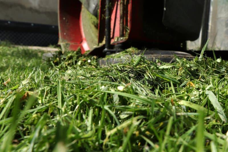 Une herbe fauchée avec la machine de fauchage électrique Un reste d'herbe sur une colline photos libres de droits