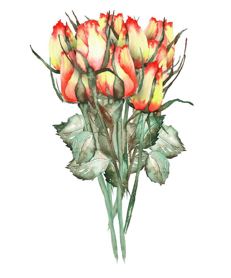 Une illustration avec un bouquet belles roses rouges et jaunes de l'aquarelle des neuf illustration stock
