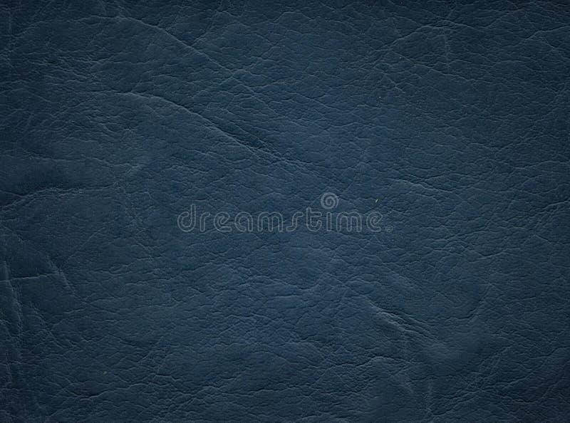 Une image d'un fond en cuir gentil Texture de peau de vache photos libres de droits