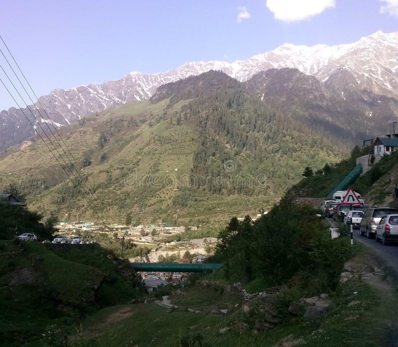 Une image montrant les prés d'herbe et les arbres coniféres sur les montagnes et crêtes plaquées de neige vues sur le fond photographie stock libre de droits