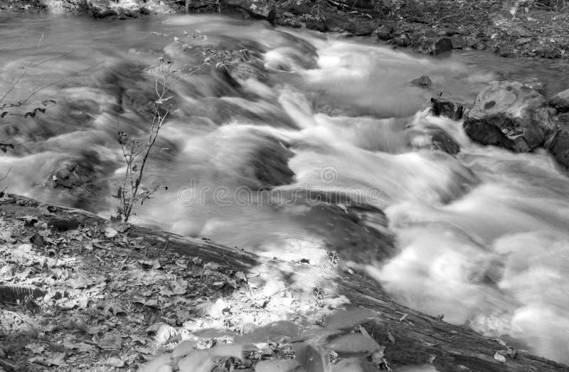 Une image noire et blanche d'une petite cascade sur un courant sauvage de montagne images stock