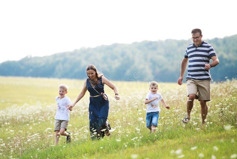 Une jeune famille avec deux petits fils marchant en nature un jour d'été photos stock