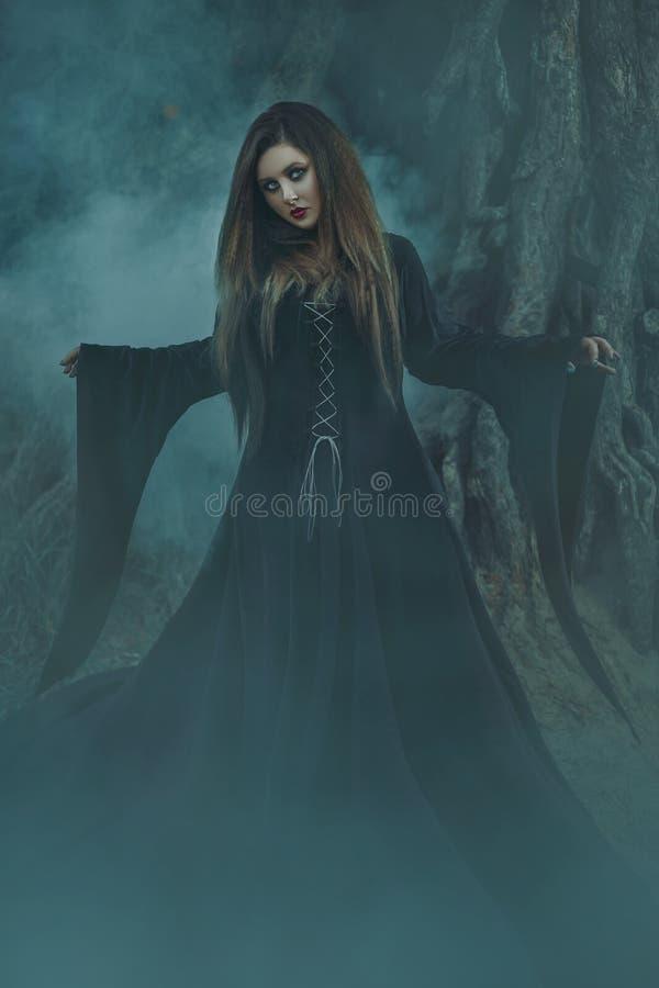 Une jeune femme dans la robe longue noire avec de longs cheveux regardant directement c illustration stock
