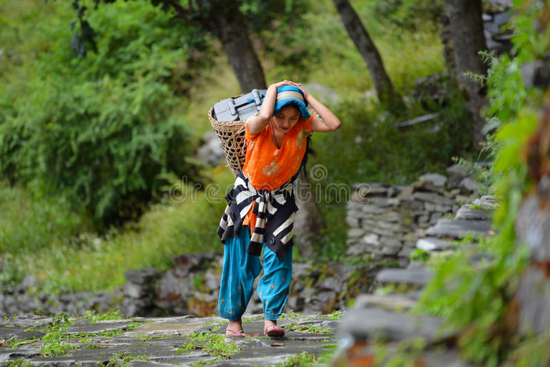 Une jeune femme de Gurung Sherpa portant un panier en Himalaya photos stock
