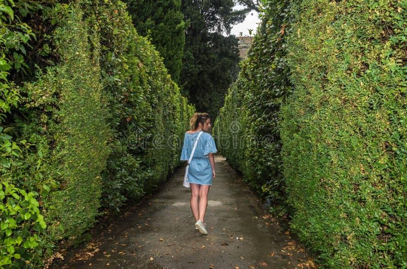 Une jeune fille marche le long de l'allée dans le labyrinthe des buissons photos stock