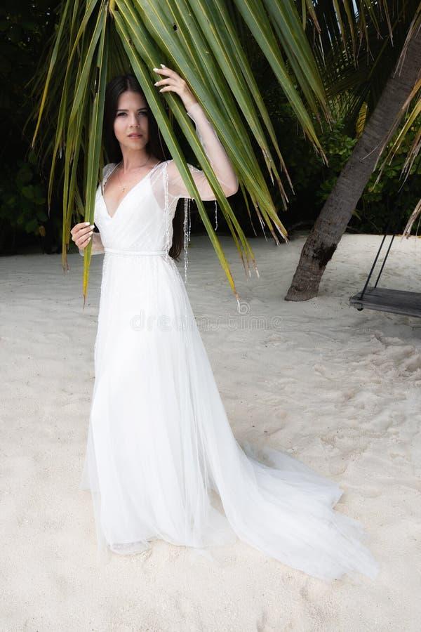 Une jeune mariée dans une robe blanche se tient sous une feuille énorme de paume photo libre de droits