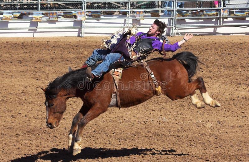 Une La Fiesta De Los Vaqueros, Tucson, Arizona image libre de droits
