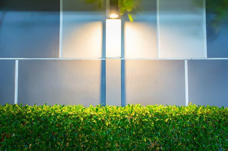 Une lampe de mur moderne dans le jardin image stock for Le jardin moderne