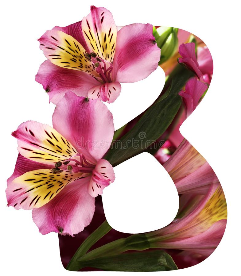 Une lettre de l'alphabet B d'isolement sur le fond blanc avec le chemin de coupure Fait à partir du fond naturel de fleur Avec un illustration libre de droits