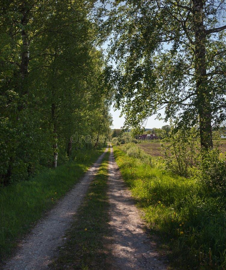 Une longue route à la maison photographie stock libre de droits