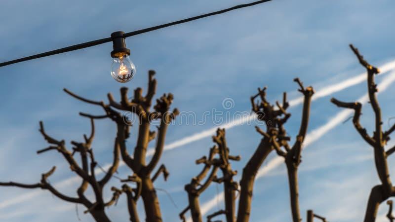 Une lumière monte photo libre de droits