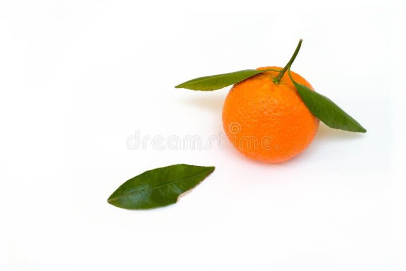 Une mandarine avec une lame verte photos libres de droits