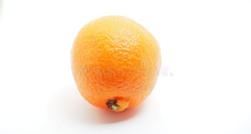 Une mandarine entière sur un fond blanc Fruit d'une usine d'agrume photographie stock