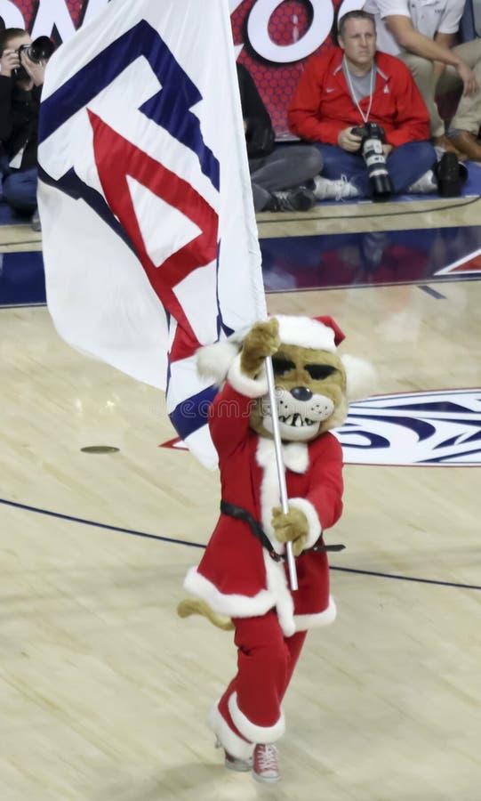 Une mascotte d'Université d'Arizona, Wilbur Wildcat, porte Santa Su photos stock