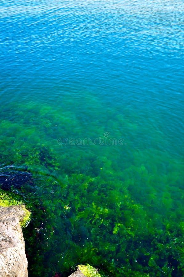 Une mer bleue calme et roches images stock