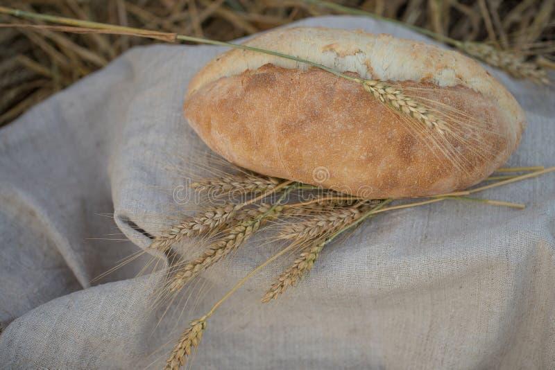 Une miche de pain est des oreilles d'un blé photographie stock
