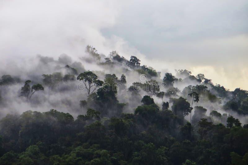 Une montagne dans Petchaboon, Thaïlande photographie stock