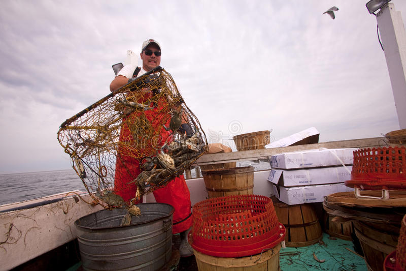 Une pêche de crabe de pêcheur, chesapeake images libres de droits