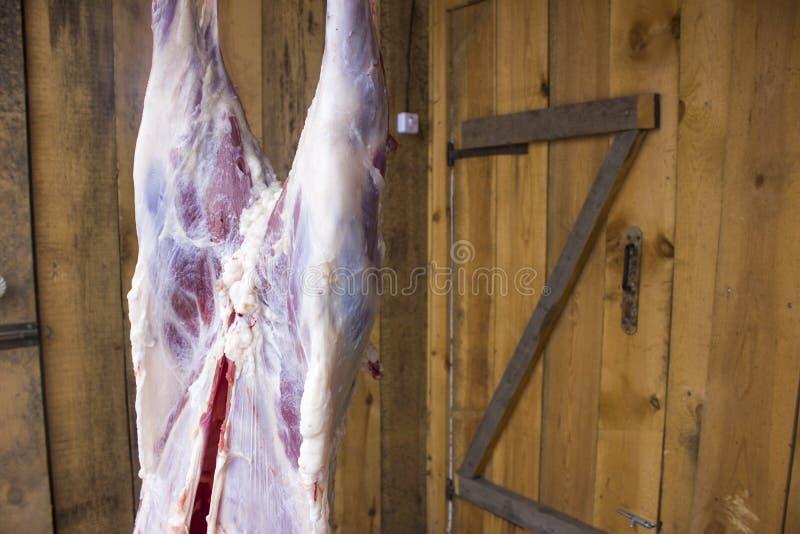 Une partie de carcasses de moutons photos stock