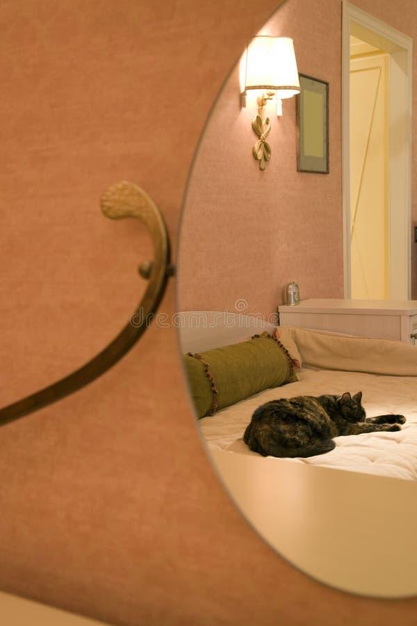 une partie de pièce avec un chat dans le miroir images stock