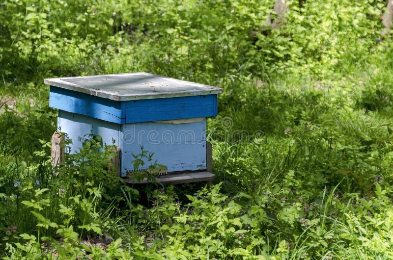 Une partie de rucher avec la vue vers la ruche photographie stock libre de droits