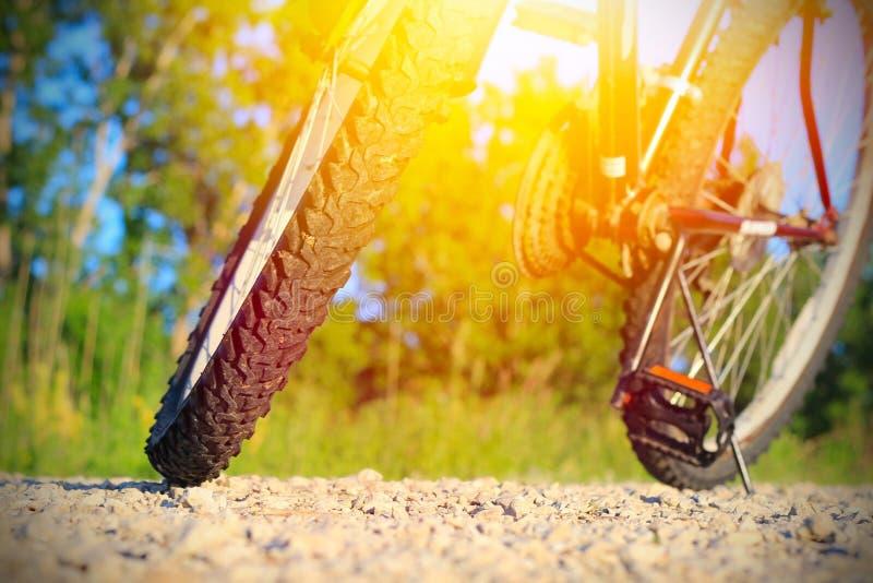 Une partie de vélo de montagne image stock
