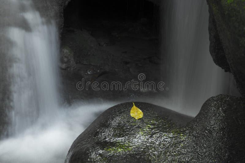 Une partie du niveau 5 de la cascade d'Erawan photographie stock libre de droits