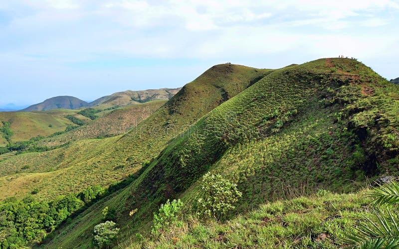 Une pente de montagne herbeuse dans la région occidentale de Ghats de l'Inde du sud images libres de droits