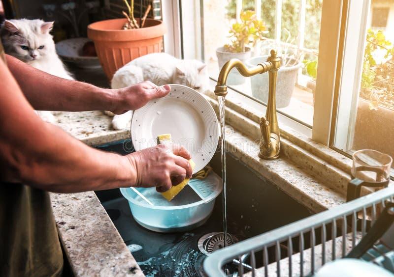Une personne lave un plat photographie stock libre de droits