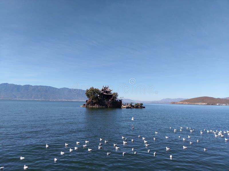 Une petite ?le avec une maison sensible sur le lac, dans Yunnan photographie stock libre de droits