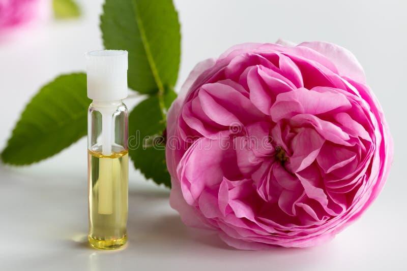 Une petite bouteille d'huile essentielle de rose avec une fleur de rose image libre de droits
